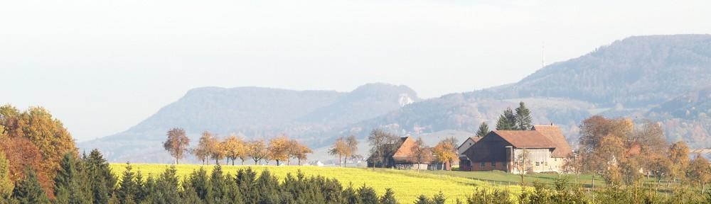 hoetzer-online.de